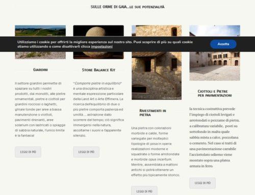 Sito web: StoneAgeToday.com